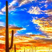 Pain Management Locums in Tucson